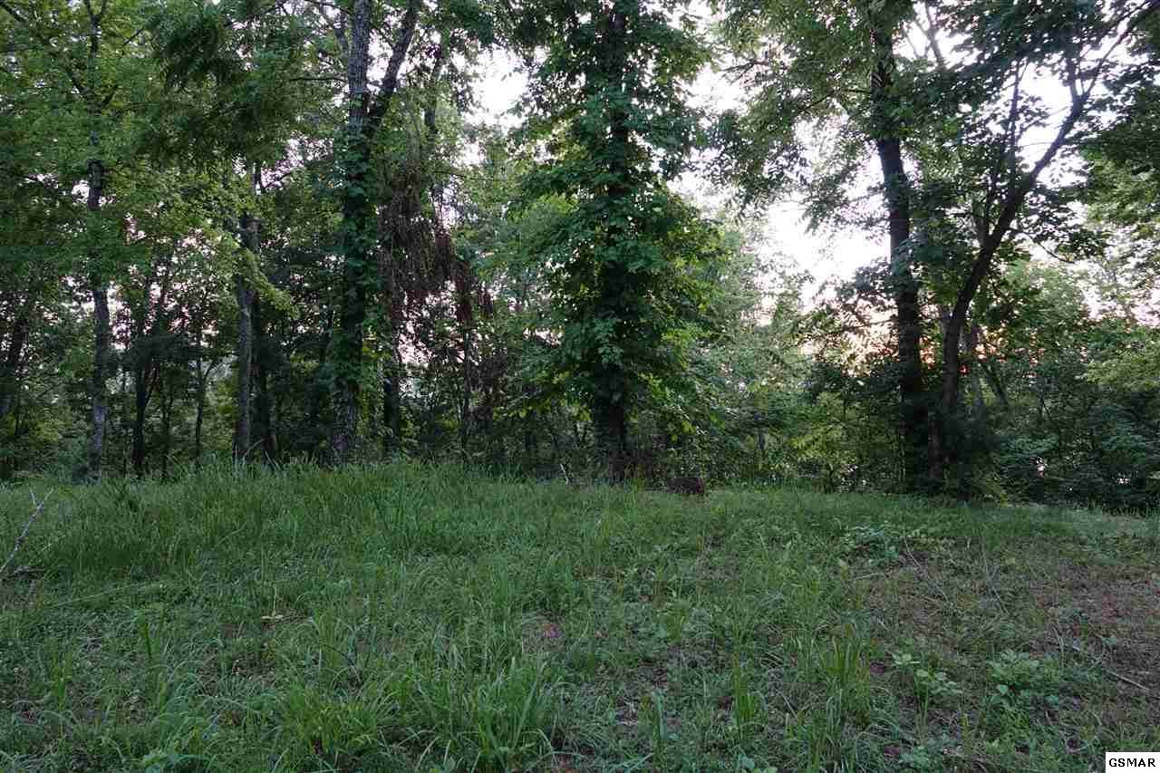 Lot 15 Waterford Way - Photo 1