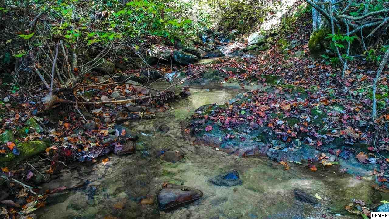 1ac Bogard Creek Way - Photo 1