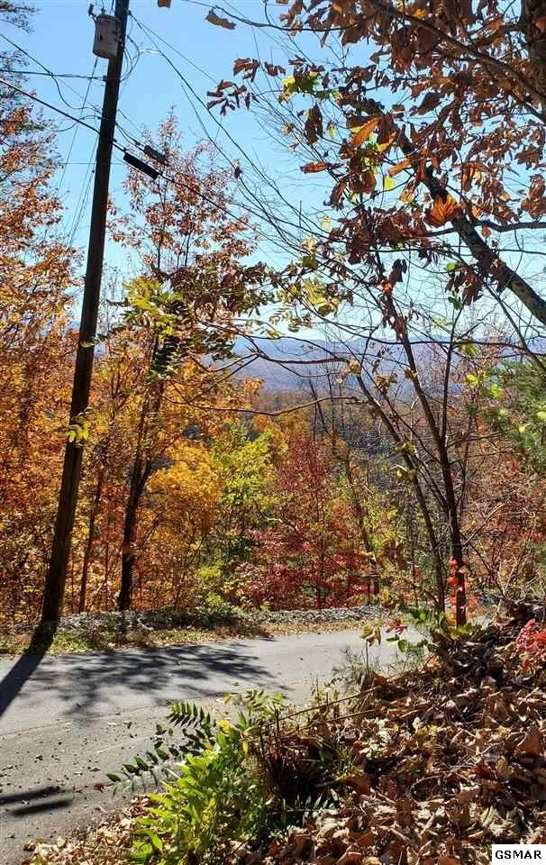 Lot 5 Mccarter Drive, Sevierville, TN 37862 (#231054) :: Colonial Real Estate