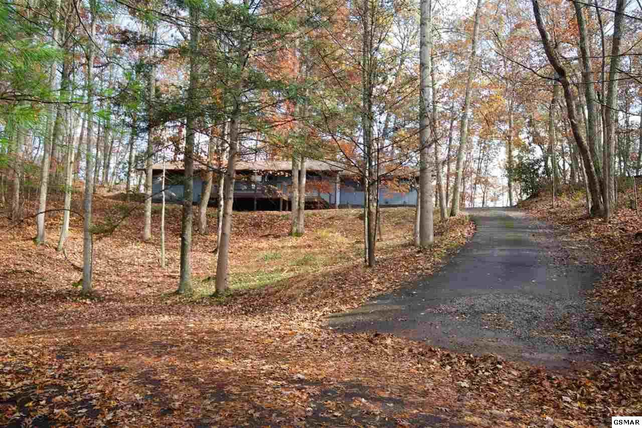420 Hickory Tree Hollow Road - Photo 1