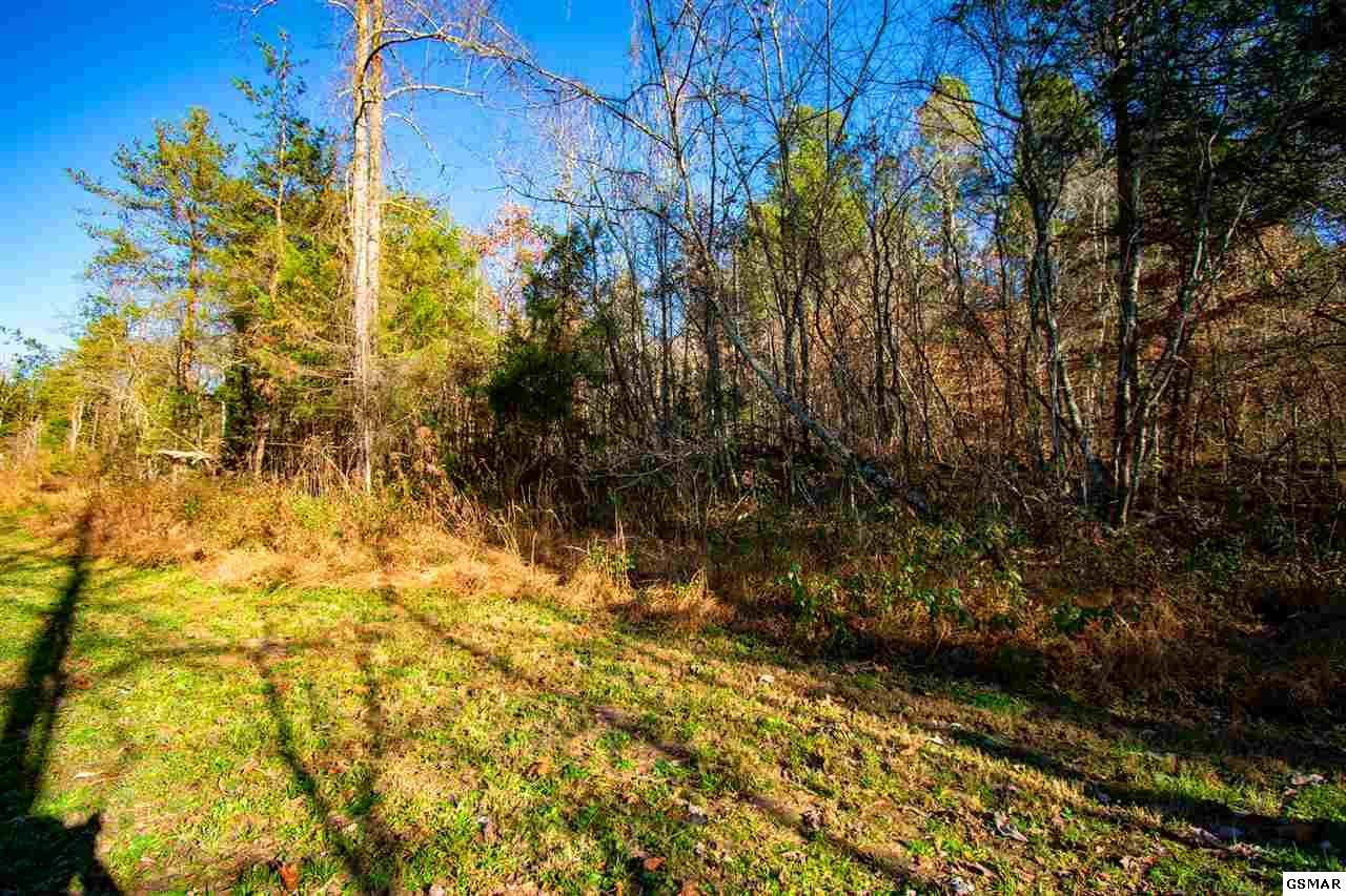 4900 Racoon Valley Drive - Photo 1