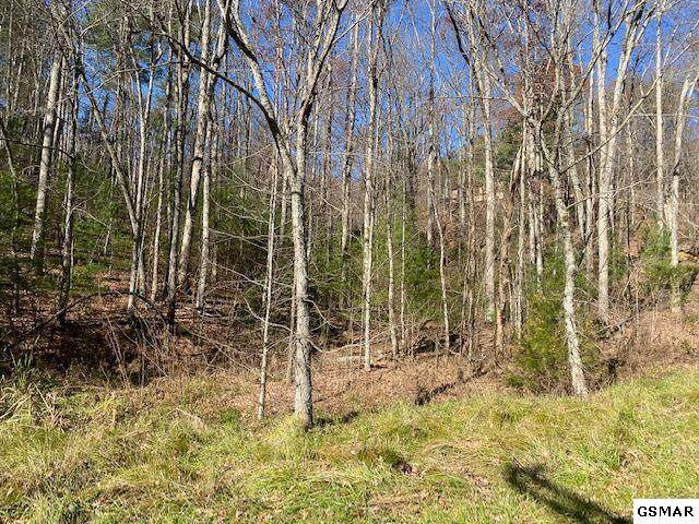 Lot 55 Wintergreen Dr, Sevierville, TN 37876 (#231238) :: Colonial Real Estate