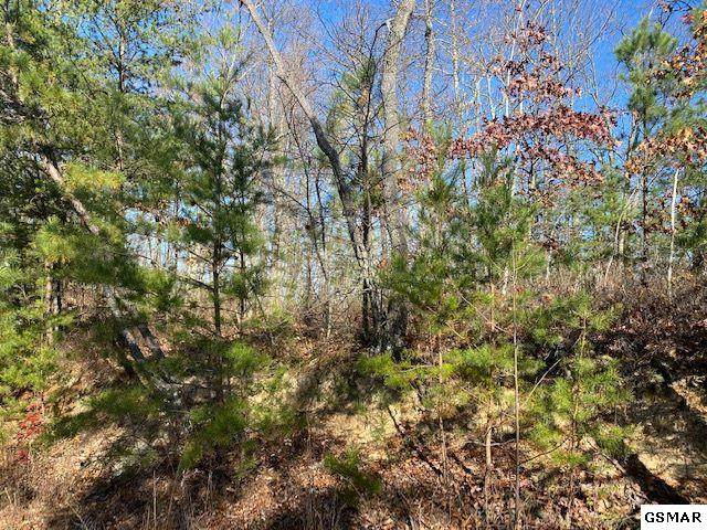 Lot 49 Wintergreen Dr, Sevierville, TN 37876 (#231242) :: Colonial Real Estate