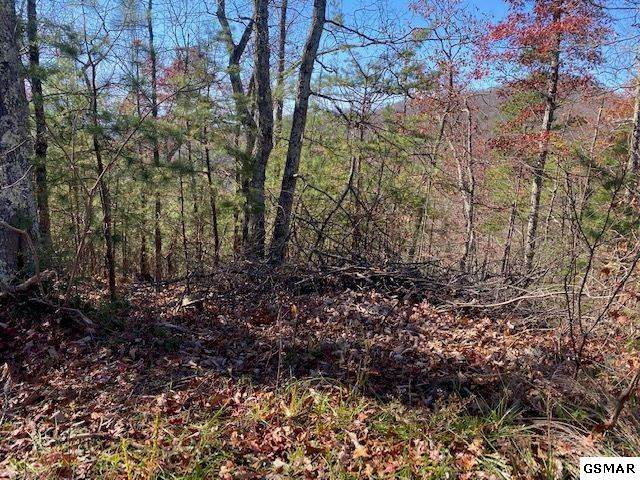 Lot 48 Wintergreen Dr, Sevierville, TN 37876 (#231243) :: Colonial Real Estate