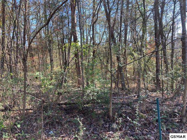 Lot 18 Terry St, Newport, TN 37821 (#231244) :: Colonial Real Estate