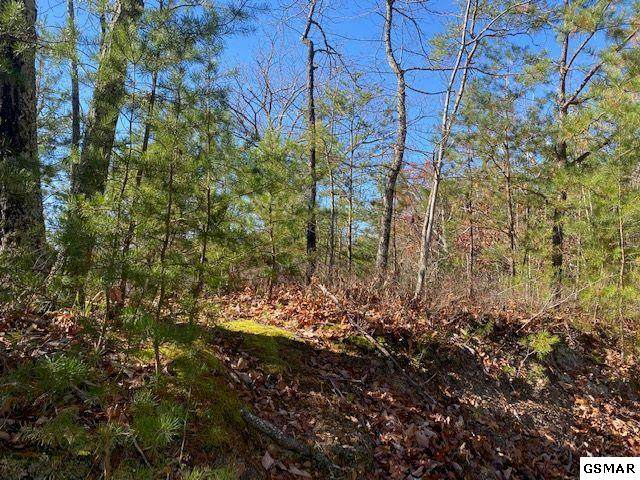 Lot 39 Elderberry Dr, Sevierville, TN 37876 (#231247) :: Colonial Real Estate