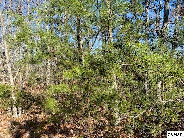 Lot 40 Ridgeview Dr, Sevierville, TN 37876 (#231251) :: Colonial Real Estate