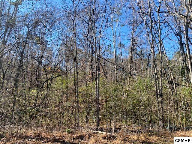 Lot 46 Silverbell Dr, Sevierville, TN 37876 (#231253) :: Colonial Real Estate