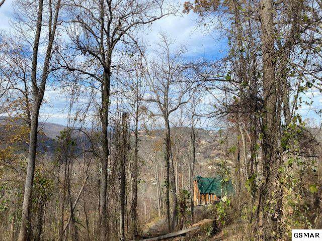 Lot 22 Stone Fence Ln, Gatlinburg, TN 37738 (#231274) :: Jason White Team | Century 21 Legacy