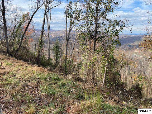 Lot 23 Stone Fence Ln, Gatlinburg, TN 37738 (#231275) :: Jason White Team | Century 21 Legacy