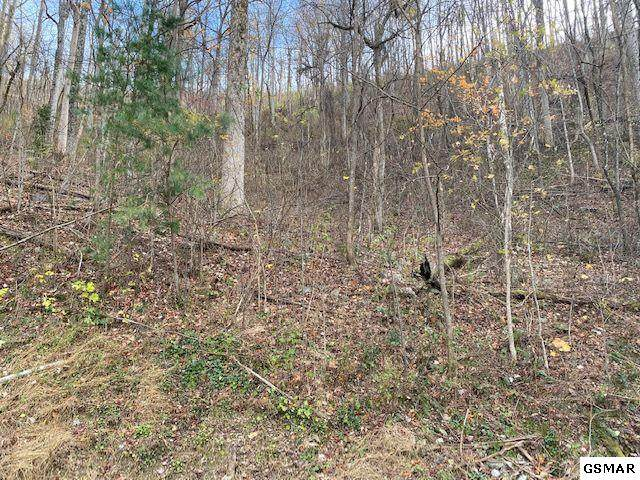Lot 34 Stone Fence Ln, Gatlinburg, TN 37738 (#231277) :: Jason White Team | Century 21 Legacy