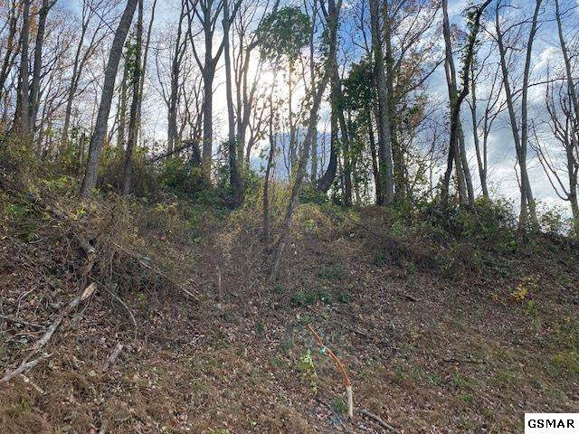 Lot 38 Stone Fence Ln, Gatlinburg, TN 37738 (#231281) :: Jason White Team | Century 21 Legacy
