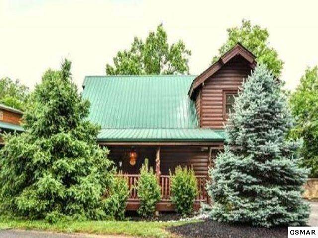 316 Alpine Mountain Way Unfirgettable, Pigeon Forge, TN 37863 (#231365) :: Billy Houston Group