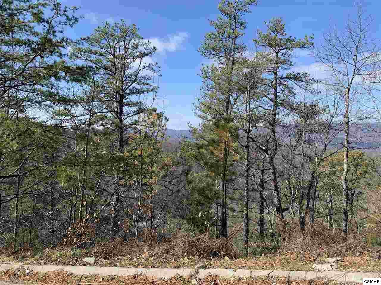 Lot 75 Smoky Ridge Way - Photo 1