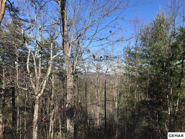 Blossom Hollow Way, Sevier County, TN 37876 (#231621) :: The Terrell Team