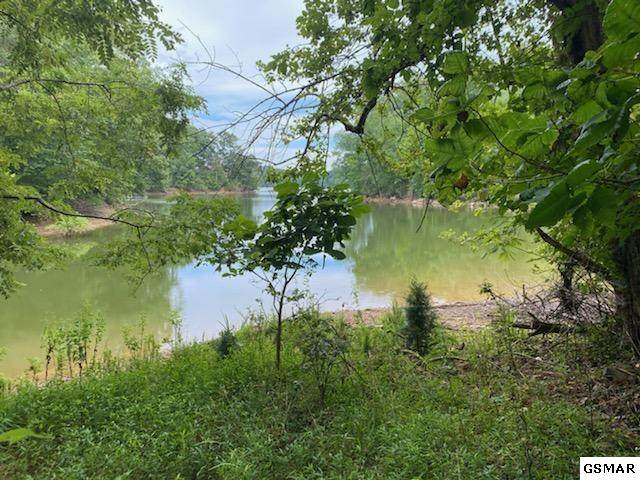 LOT 206 Harbour Point, Mooresburg, TN 37811 (#231700) :: Jason White Team | Century 21 Legacy