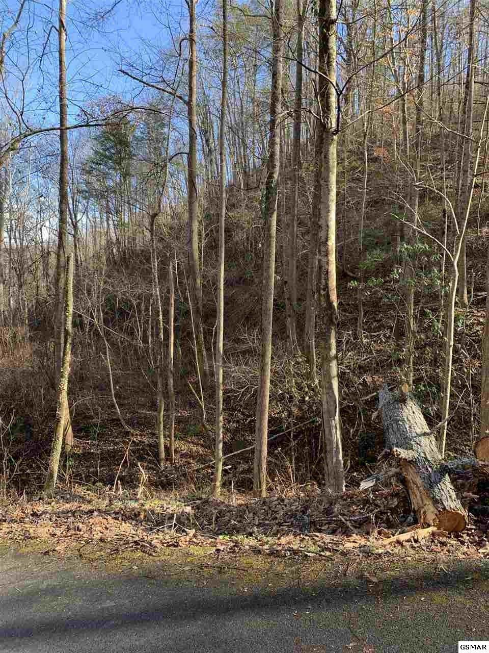 537/538 Deep Hollow Road - Photo 1
