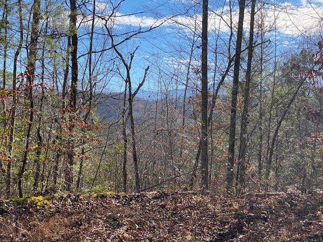 Lot 15 S B Ogle Lane, Sevierville, TN 37876 (#240088) :: Colonial Real Estate