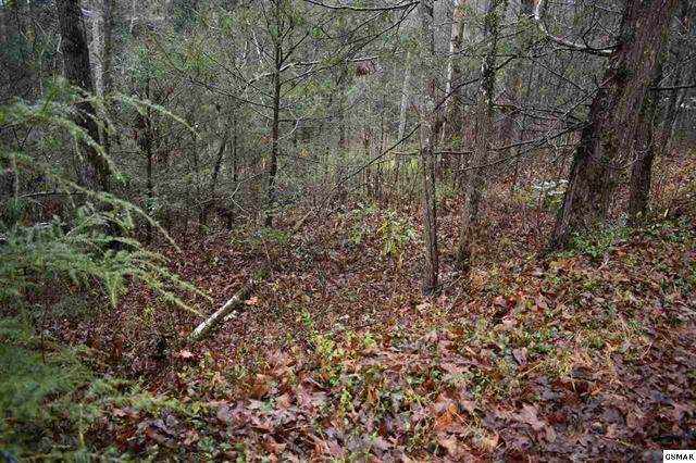 Lot 27 Powdermill Rd, Gatlinburg, TN 73953 (#240106) :: Prime Mountain Properties
