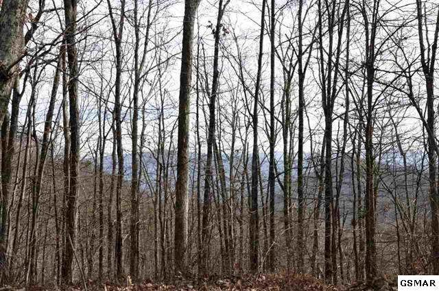 Lot 5 Old Laurel Lane, Sevierville, TN 37876 (#240146) :: Jason White Team | Century 21 Legacy