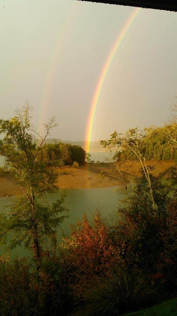 0 Paradise Hills Rd, Dandridge, TN 37725 (#240238) :: Jason White Team | Century 21 Legacy