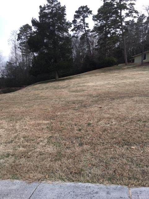 Lot 8 Morningside Lane, Dandridge, TN 37725 (#240309) :: Jason White Team | Century 21 Legacy