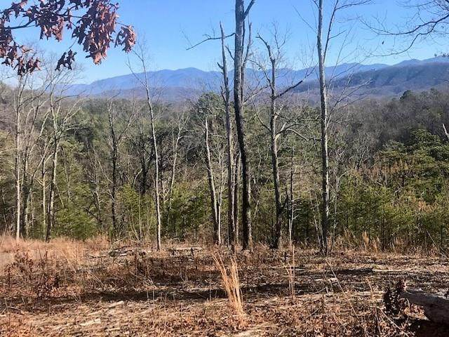 Lot 7 Lighting Strike Dr, Sevierville, TN 37862 (#240350) :: Suzanne Walls with eXp Realty