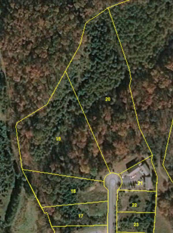 Lot 17-20 Murrell Meadows Dr., Sevierville, TN 37862 (#240393) :: Colonial Real Estate