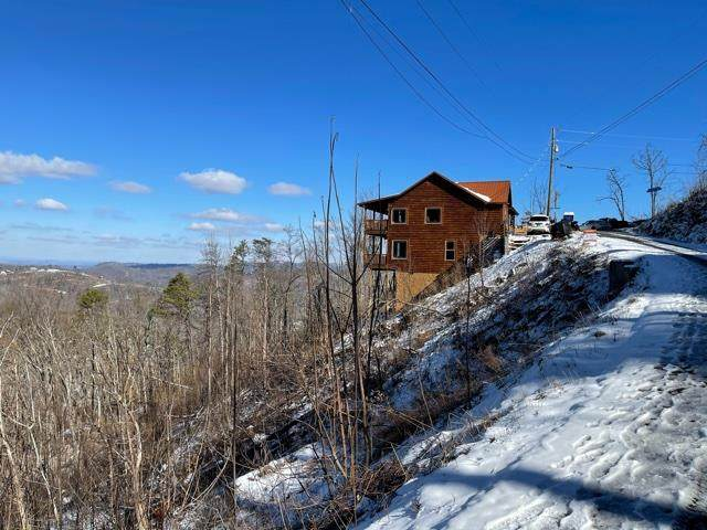 949 Crooked Ridge Rd, Gatlinburg, TN 37738 (#240413) :: Colonial Real Estate