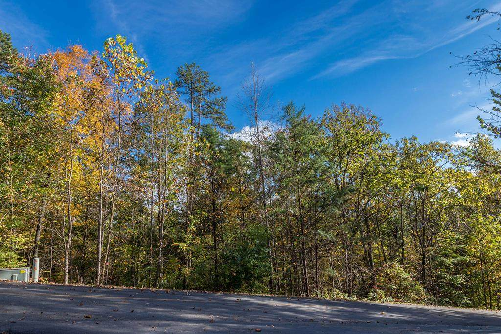 Lot 73E Redtail Road - Photo 1