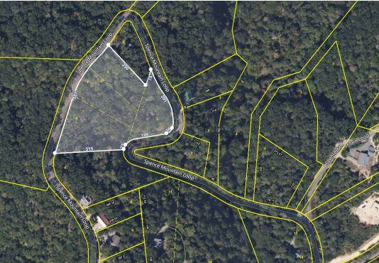 Spence Mountain Loop, Sevierville, TN 37876 (#240701) :: Colonial Real Estate