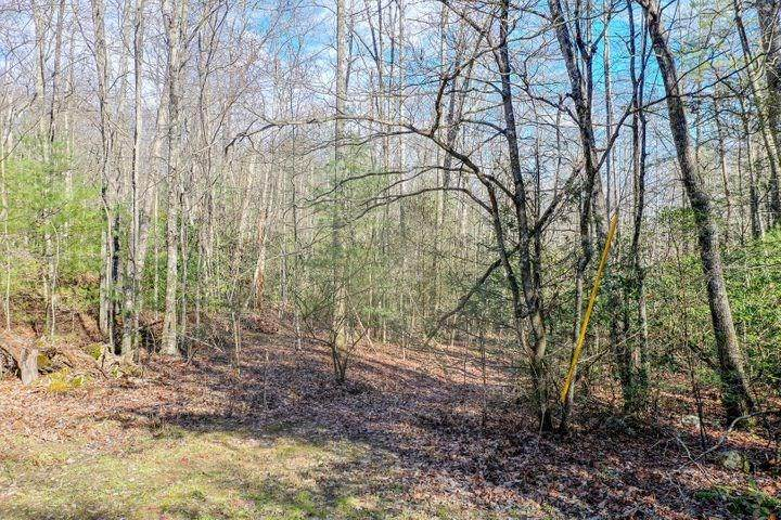 Avens Lane Lot 9 - Photo 1