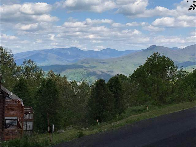 1143 Upper Alpine Way Lot 1, Gatlinburg, TN 37738 (#240844) :: Billy Houston Group