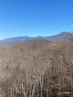 953 Cliff Branch Road, Gatlinburg, TN 37738 (#240871) :: Billy Houston Group