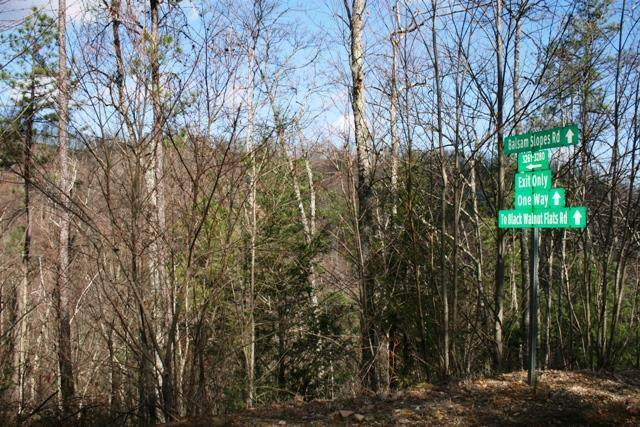7.84 acres Balsam Slopes Rd - Photo 1
