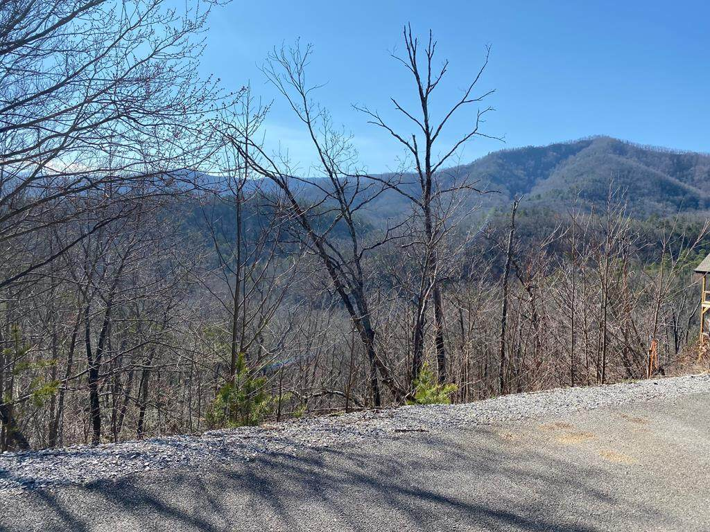 Mountain Dreams Way - Photo 1
