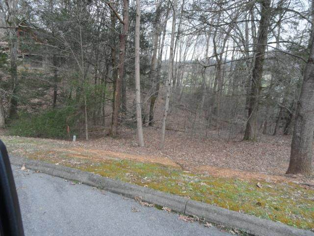 Lot 13R Roundtop Dr - Photo 1