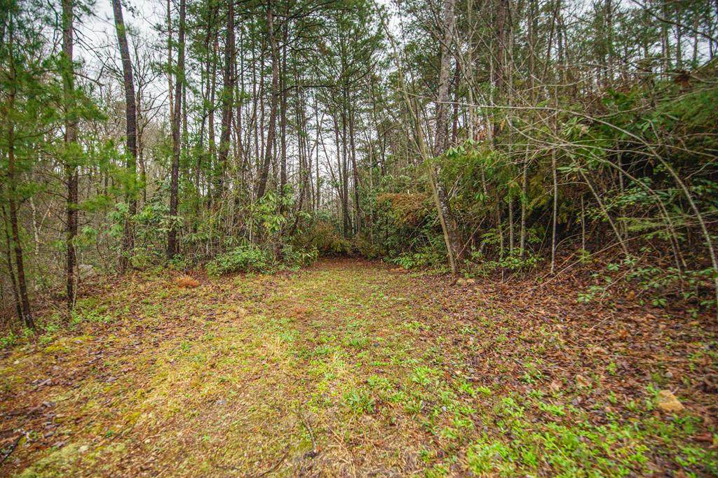 Lot 65 Birch Drive - Photo 1