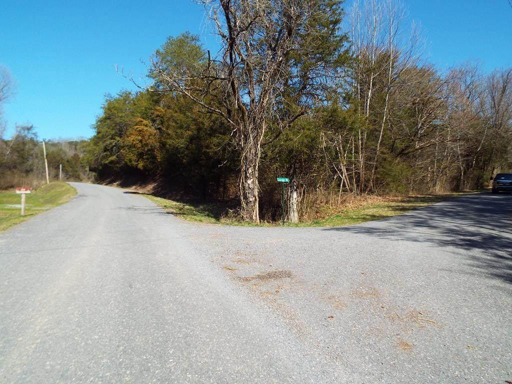 Lot 41 Clearwood Road - Photo 1
