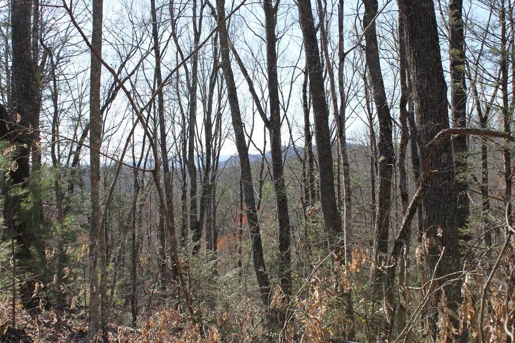 Hunter Hills Way - Photo 1