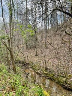 Lot 4 Rule Way, Sevierville, TN 37876 (#241851) :: Prime Mountain Properties