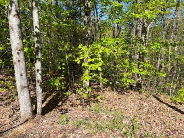 Lot 195A Oak Ct, Sevierville, TN 37876 (#241970) :: Prime Mountain Properties
