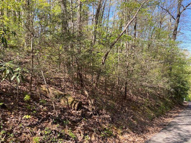 Lot 1124 Rose Pass, Sevierville, TN 37876 (#241972) :: Suzanne Walls with eXp Realty