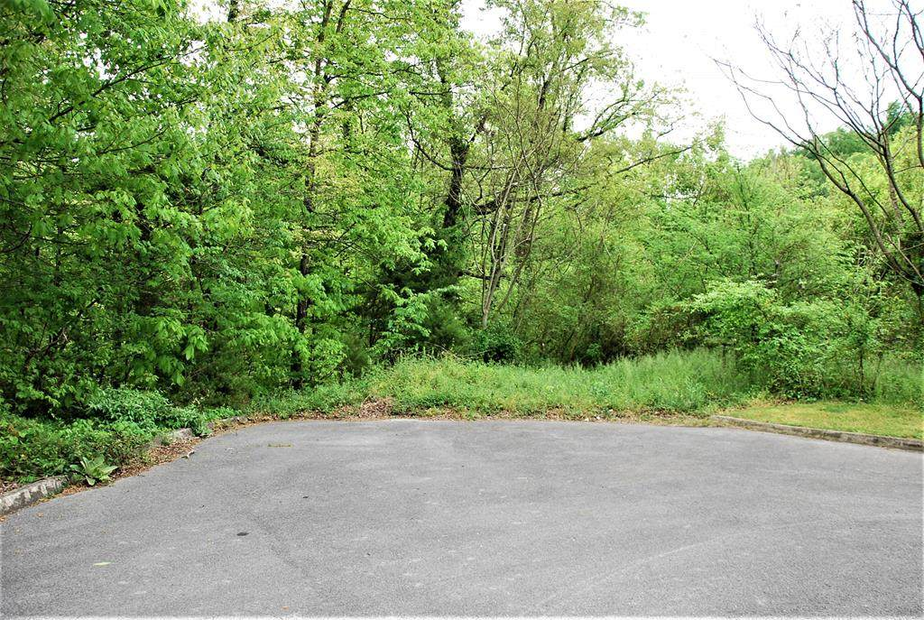 Lot 15C Frontier View Drive - Photo 1