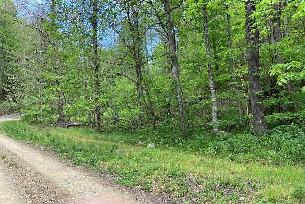 1046 Reagan Springs Road - Photo 1