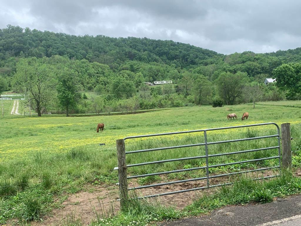 Hinchey Hollow Road - Photo 1