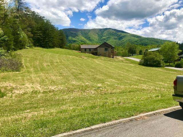 Lot 1 Boxwood Lane, Sevierville, TN 37862 (#242494) :: Colonial Real Estate