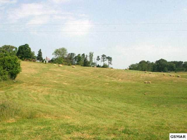 Lot 8 Forgety Road, Jefferson City, TN 37760 (#242587) :: The Terrell-Drager Team
