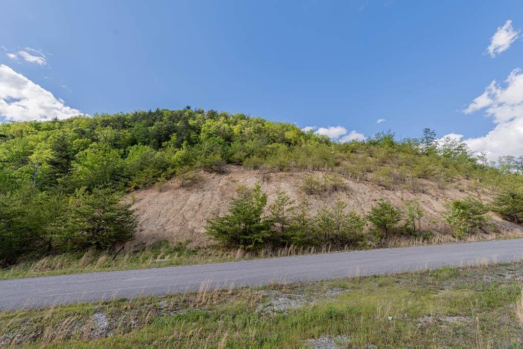Mountain Ash Way Lot 61 - Photo 1
