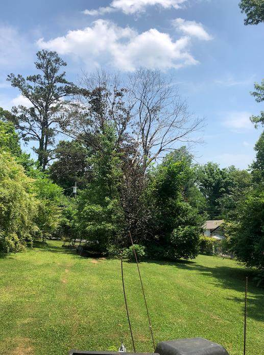 5419 Weston Road, Knoxville, TN 37918 (#242918) :: JET Real Estate